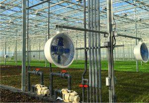Advanced indoor grow