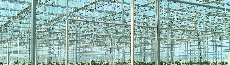 Ferigation-Contact us